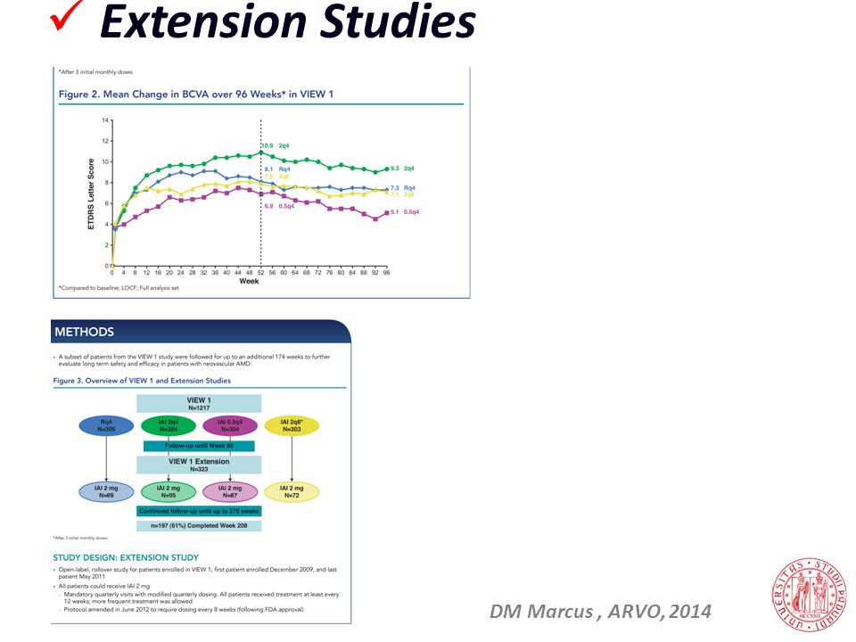 Extension Studies DM Marcus , ARVO, 2014 31