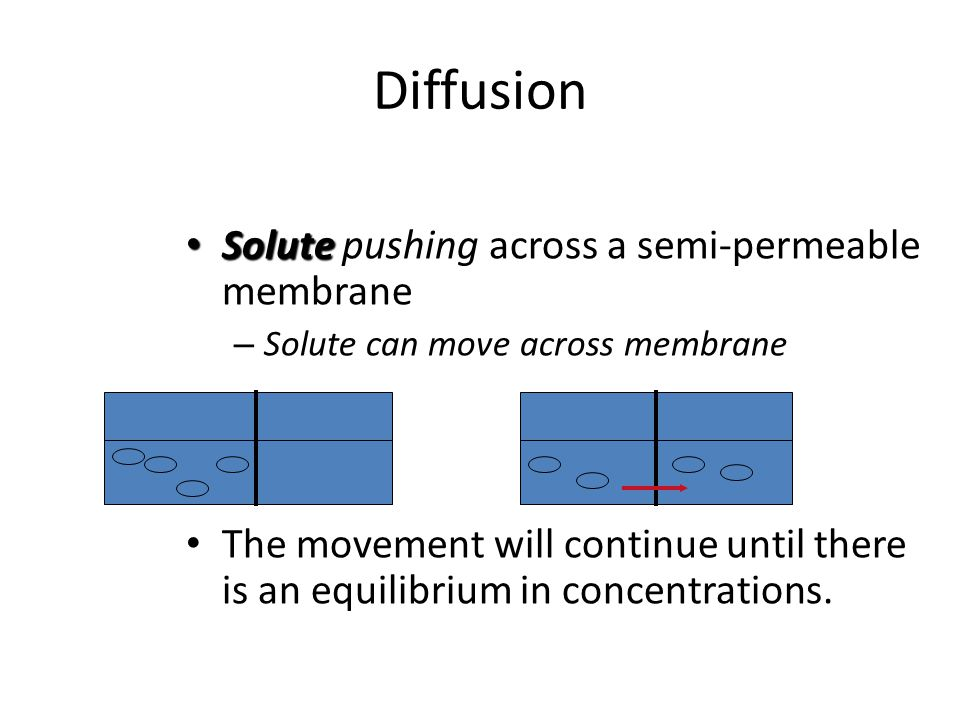 Diffusion Solute pushing across a semi-permeable membrane