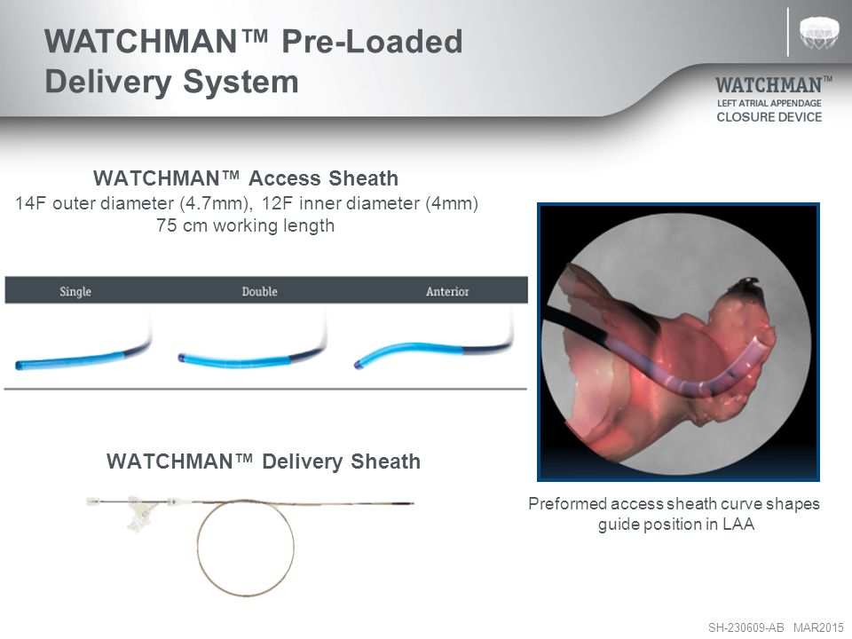 WATCHMAN™ Pre-Loaded Delivery System