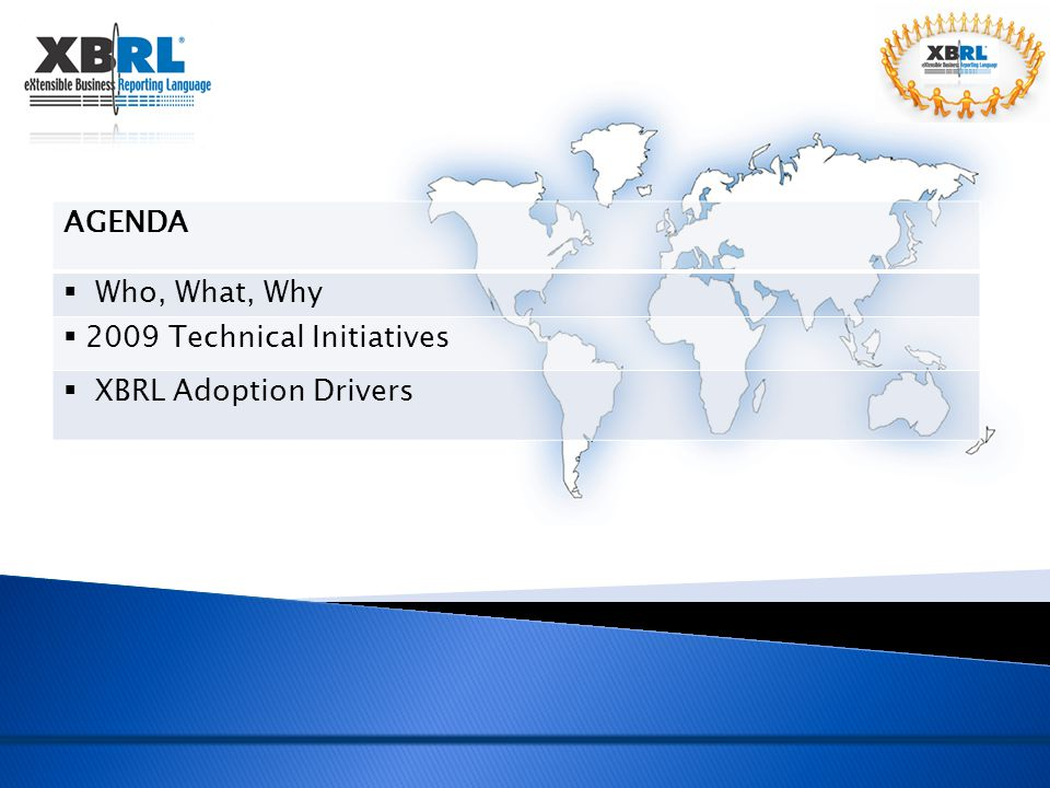 2009 Technical Initiatives XBRL Adoption Drivers