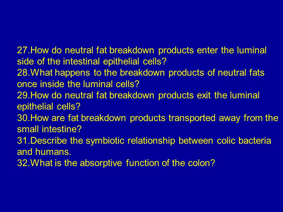 27.How do neutral fat breakdown products enter the luminal side of the intestinal epithelial cells
