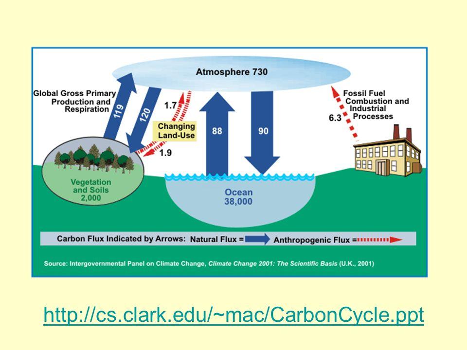 http://cs.clark.edu/~mac/CarbonCycle.ppt