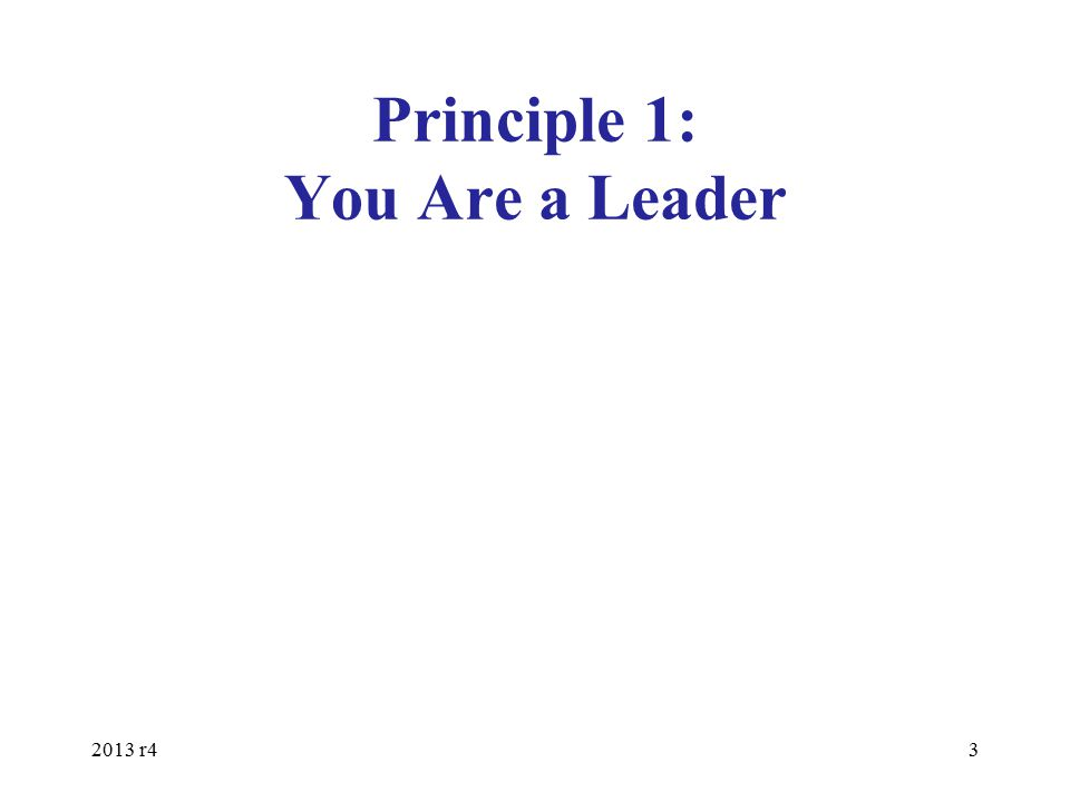 Principle 1: You Are a Leader