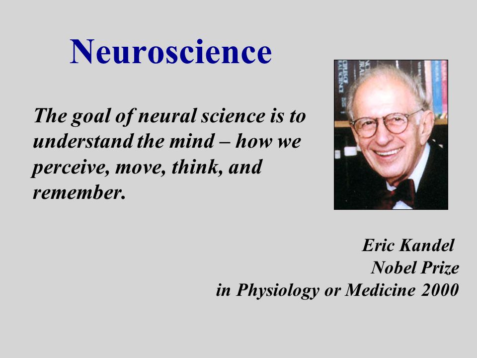 Neuroscience The goal of neural science is to understand the mind – how we perceive, move, think, and remember.