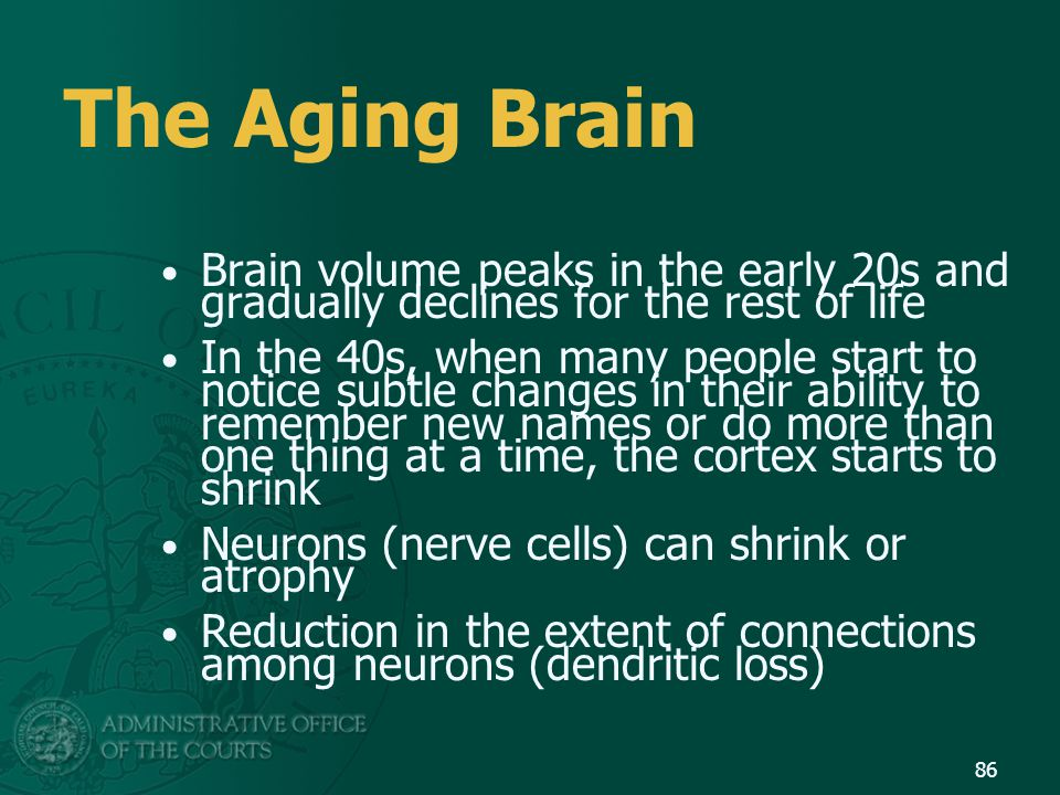 The Aging Brain Brain volume peaks in the early 20s and gradually declines for the rest of life.