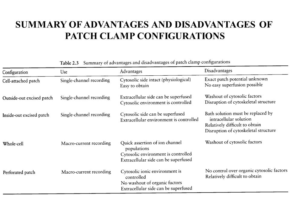 SUMMARY OF ADVANTAGES AND DISADVANTAGES OF PATCH CLAMP CONFIGURATIONS