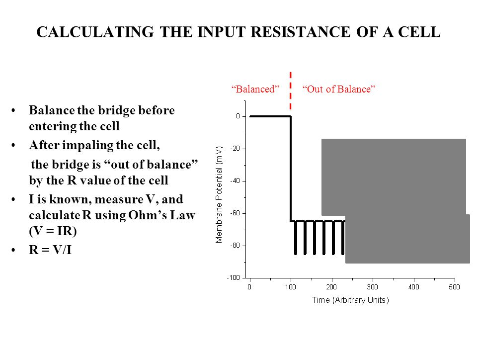 CALCULATING THE INPUT RESISTANCE OF A CELL