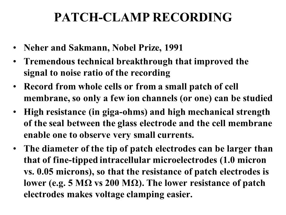 PATCH-CLAMP RECORDING