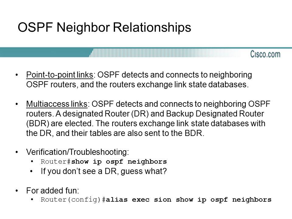 OSPF Neighbor Relationships