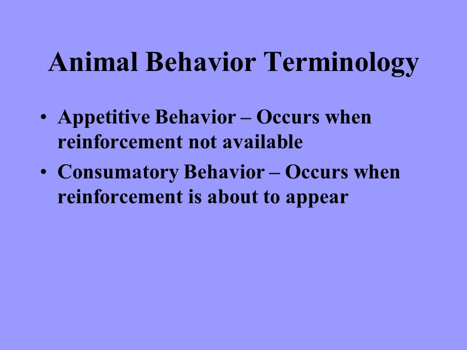 Animal Behavior Terminology