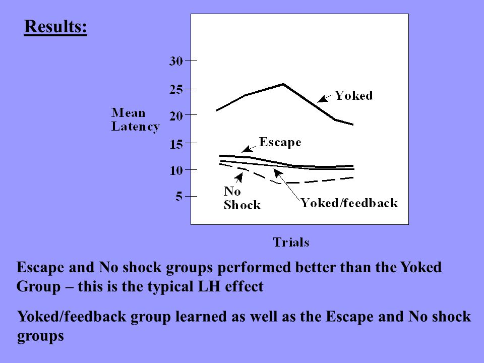 Results: Escape and No shock groups performed better than the Yoked