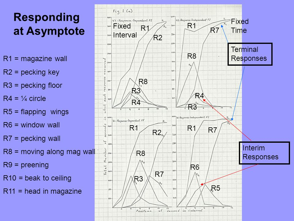 Responding at Asymptote
