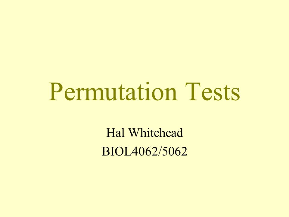 Permutation Tests Hal Whitehead BIOL4062/5062