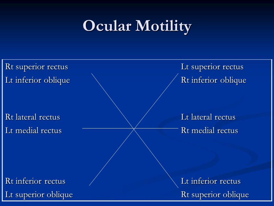 Ocular Motility Rt superior rectus Lt inferior oblique