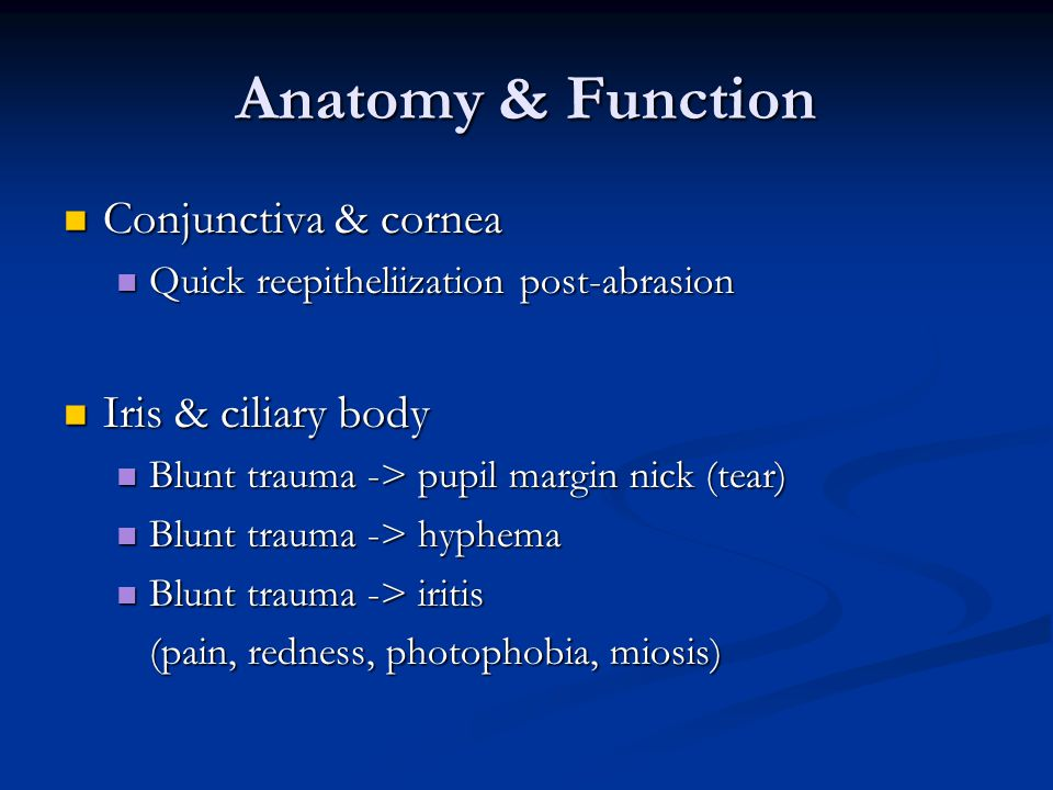 Anatomy & Function Conjunctiva & cornea Iris & ciliary body