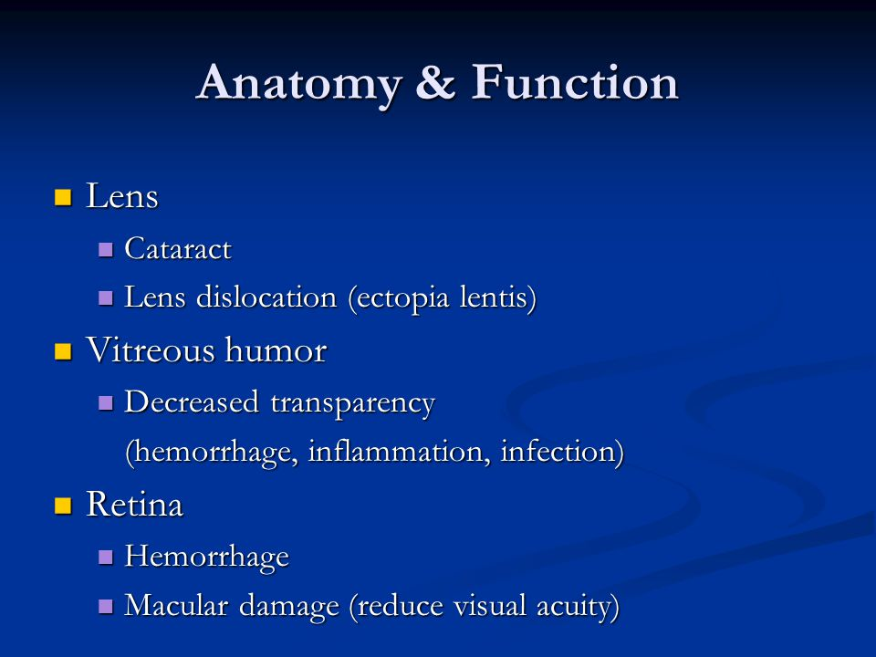 Anatomy & Function Lens Vitreous humor Retina Cataract