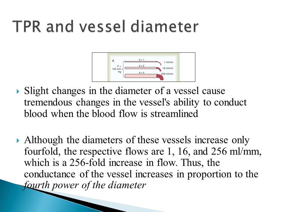 TPR and vessel diameter