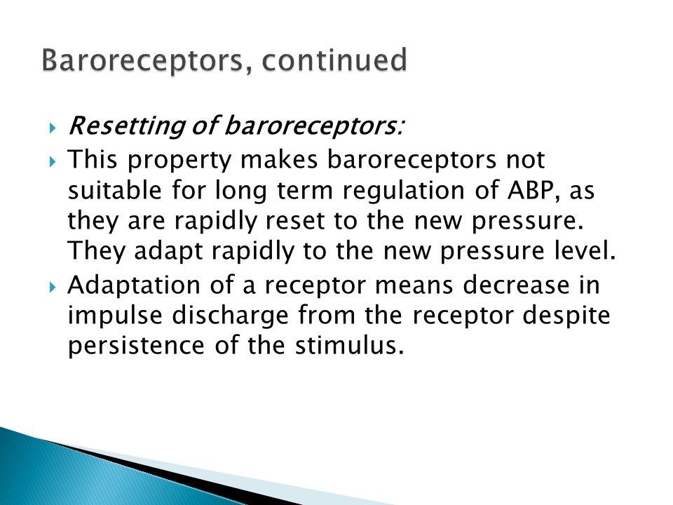Baroreceptors, continued