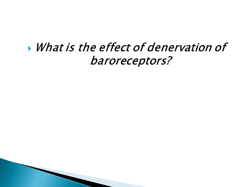 What is the effect of denervation of baroreceptors