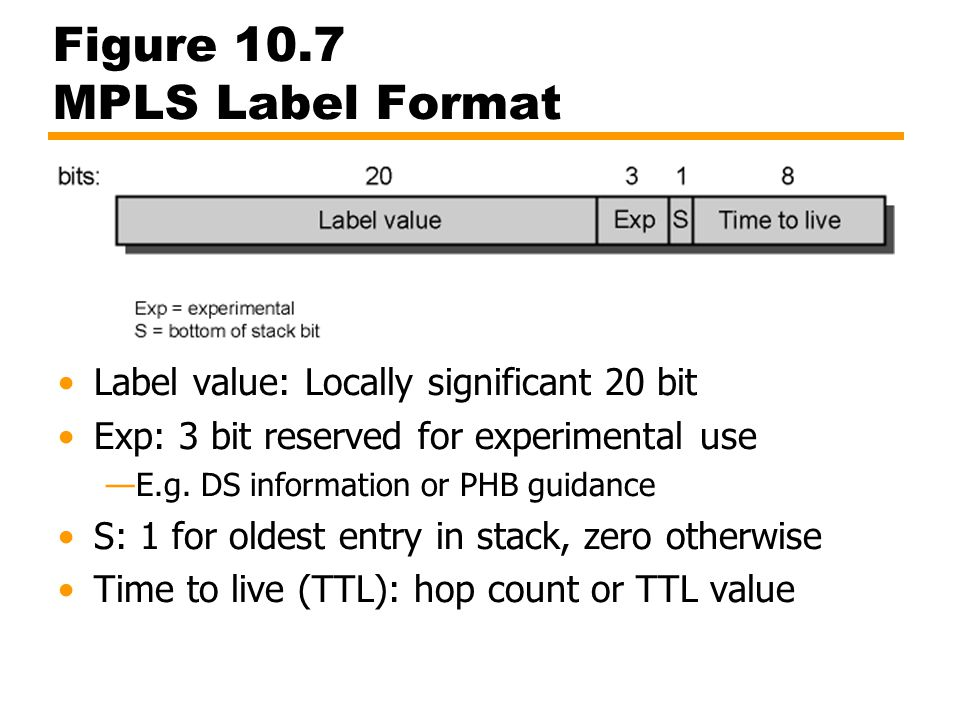 Figure 10.7 MPLS Label Format