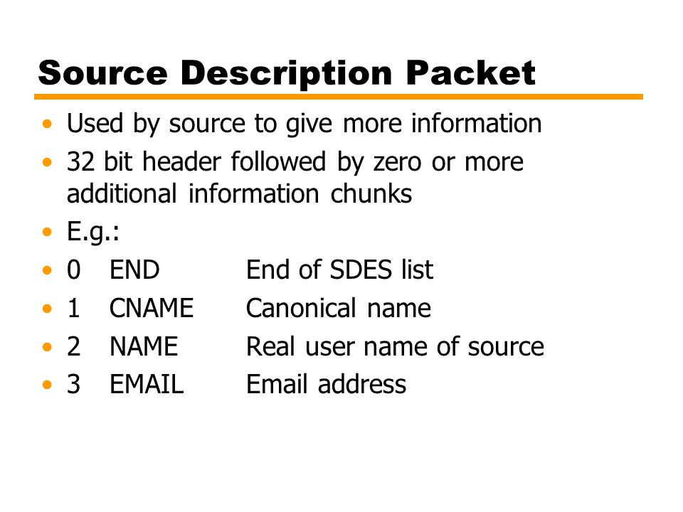 Source Description Packet