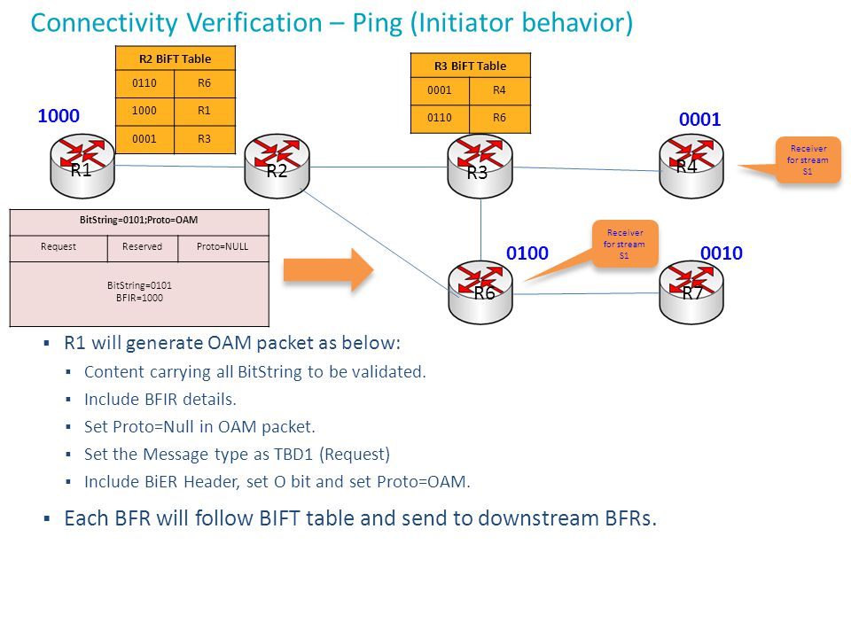 Connectivity Verification – Ping (Initiator behavior)