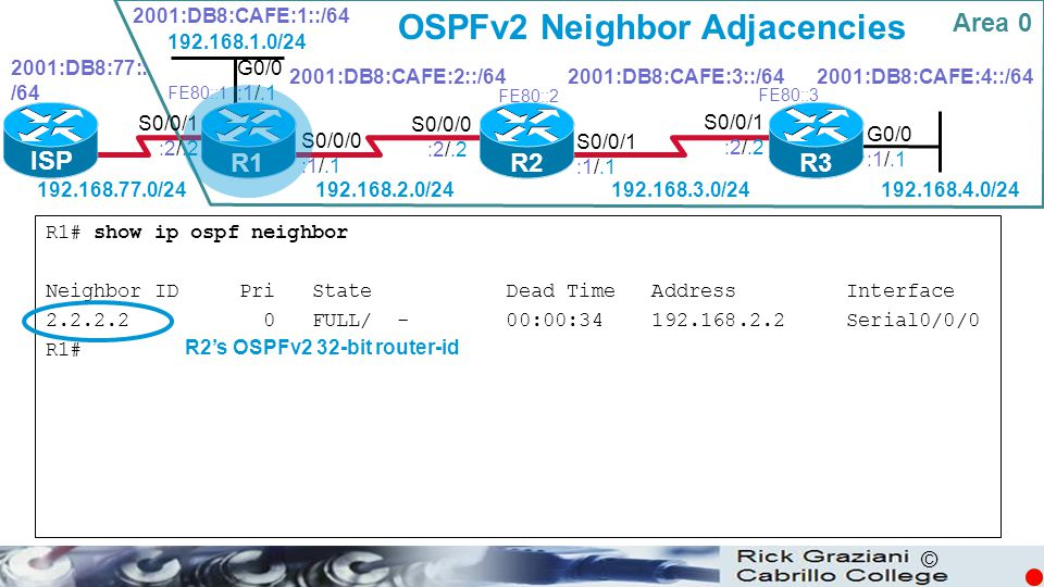 OSPFv2 Neighbor Adjacencies