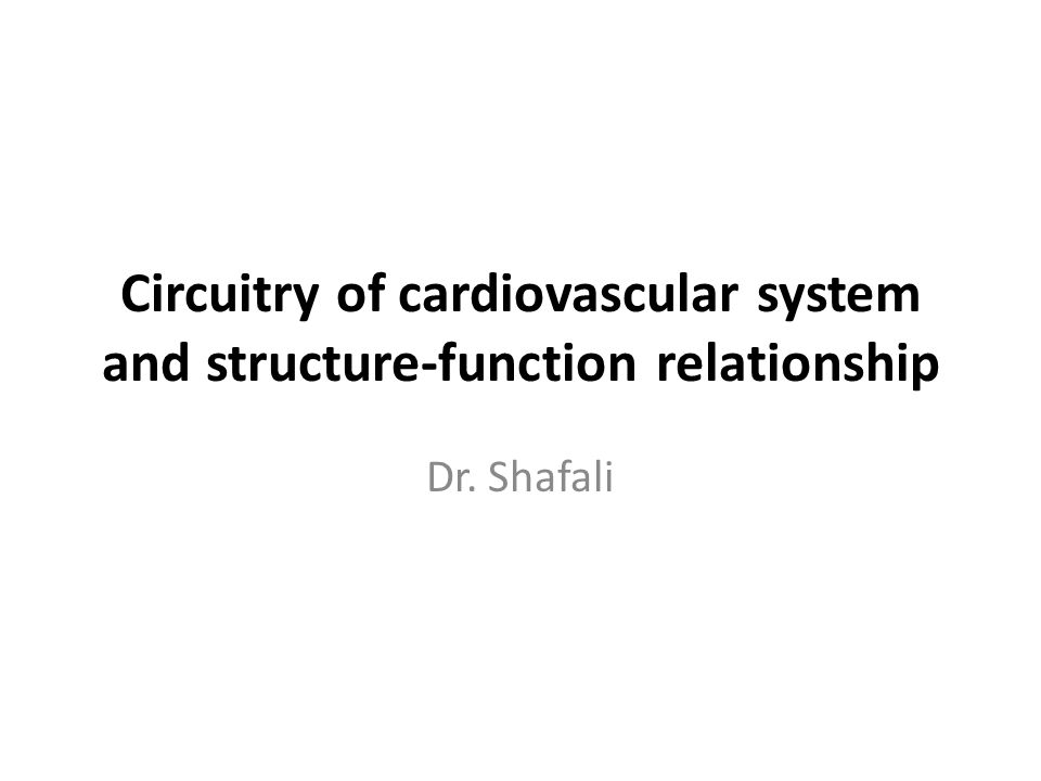 Circuitry of cardiovascular system and structure-function relationship