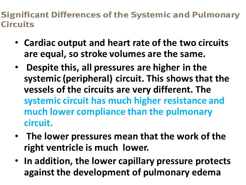 Cardiac output and heart rate of the two circuits are equal, so stroke volumes are the same.