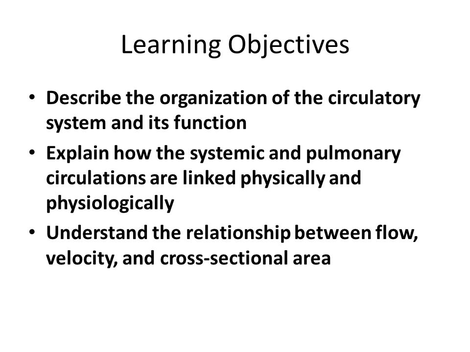 Learning Objectives Describe the organization of the circulatory system and its function.
