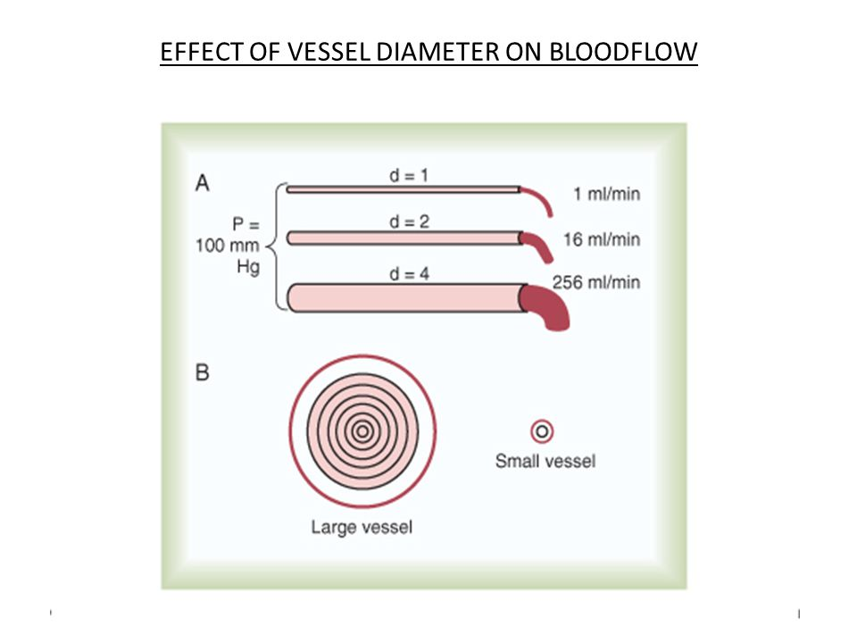 EFFECT OF VESSEL DIAMETER ON BLOODFLOW