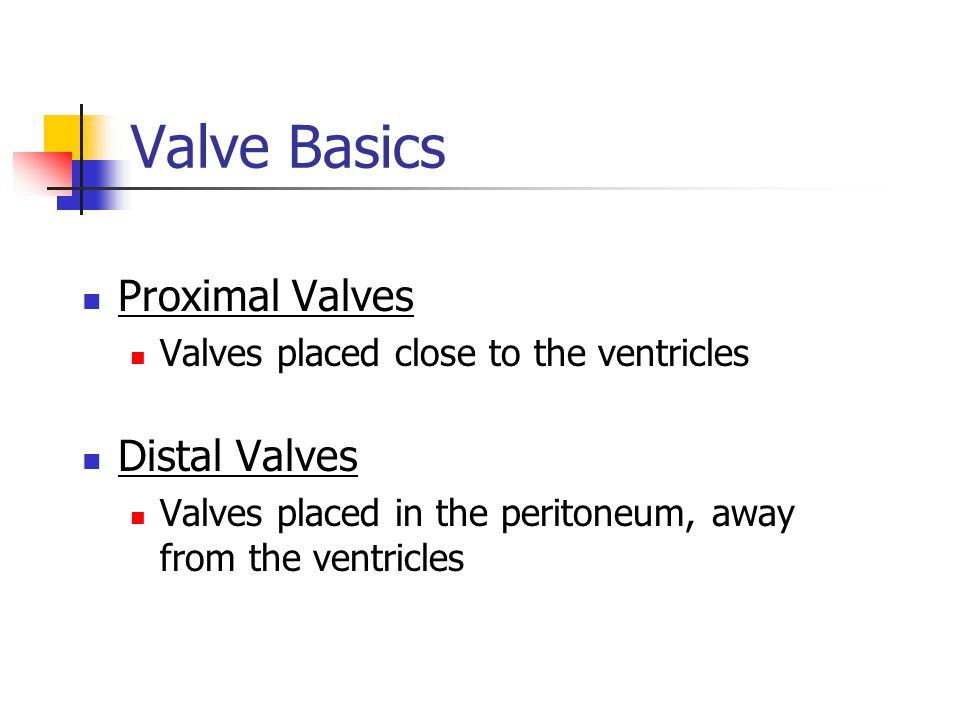 Valve Basics Proximal Valves Distal Valves