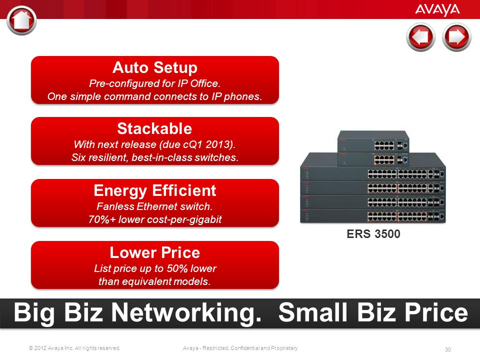 Big Biz Networking. Small Biz Price