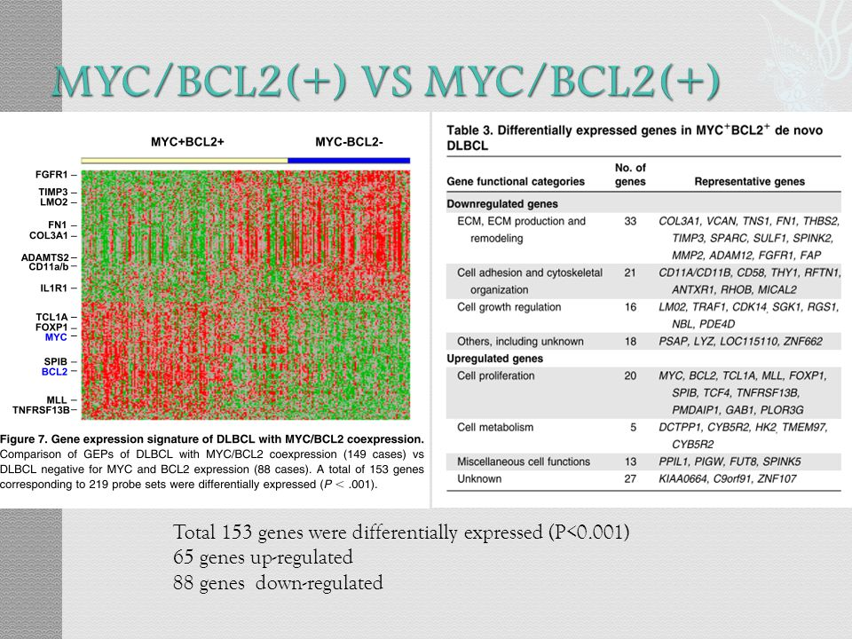 MYC/BCL2(+) VS MYC/BCL2(+)