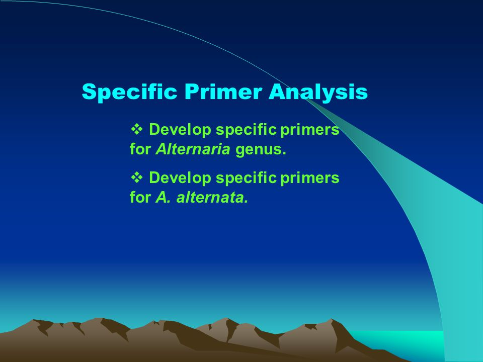 Specific Primer Analysis