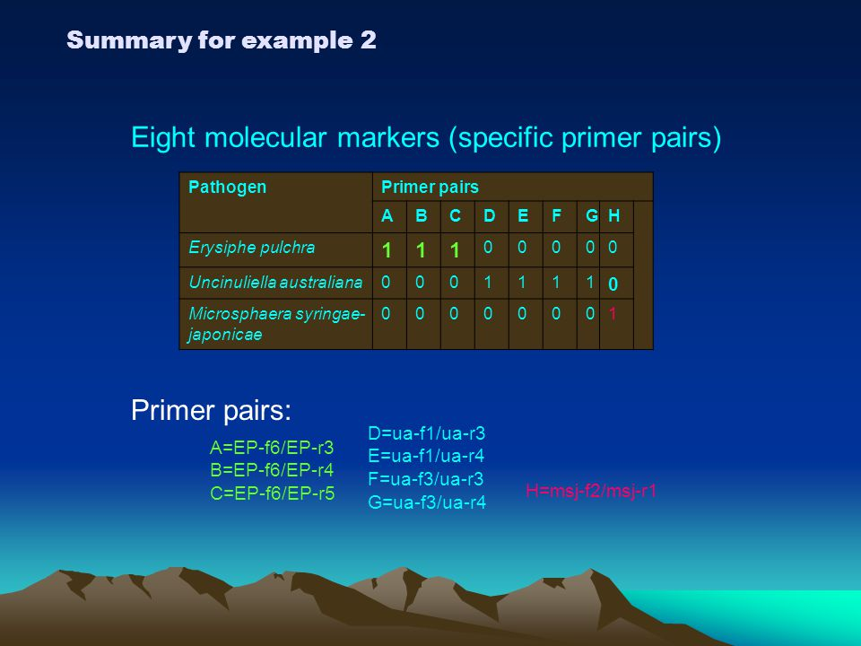 Eight molecular markers (specific primer pairs)