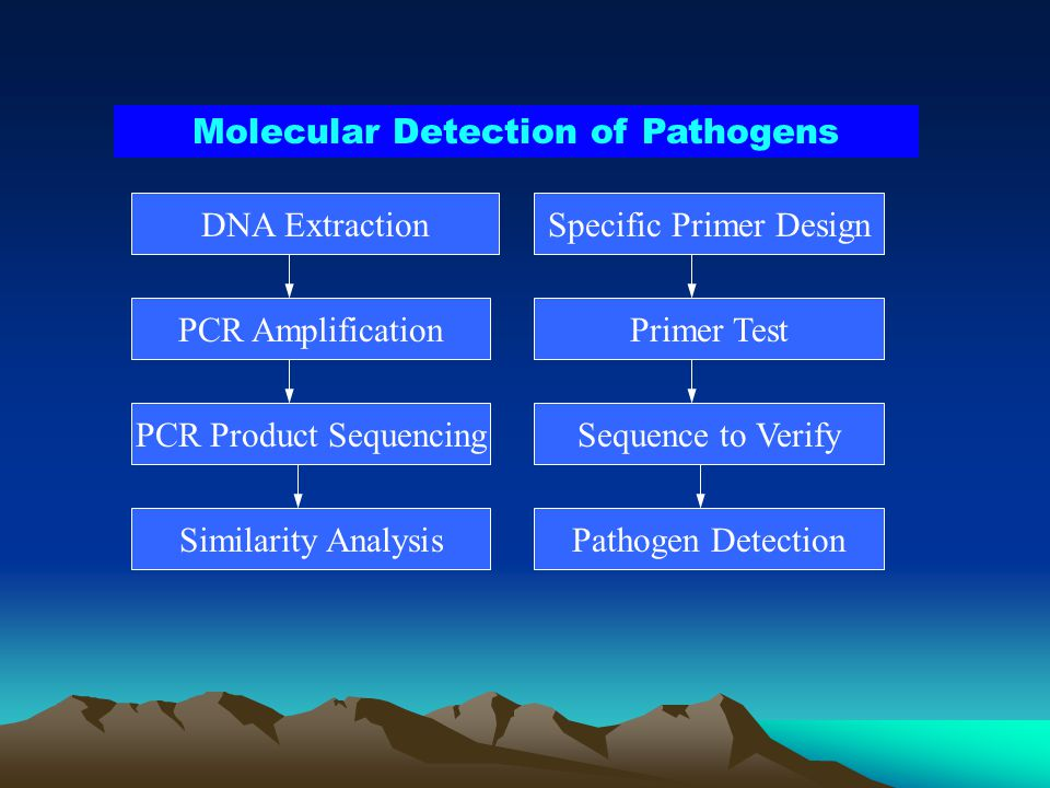 Molecular Detection of Pathogens
