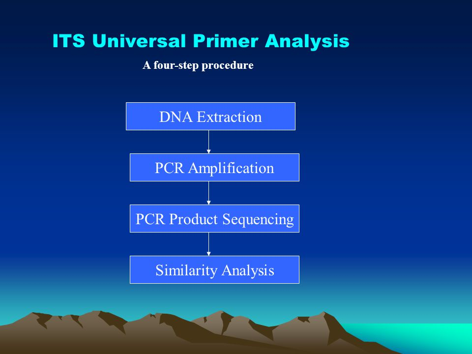 PCR Product Sequencing