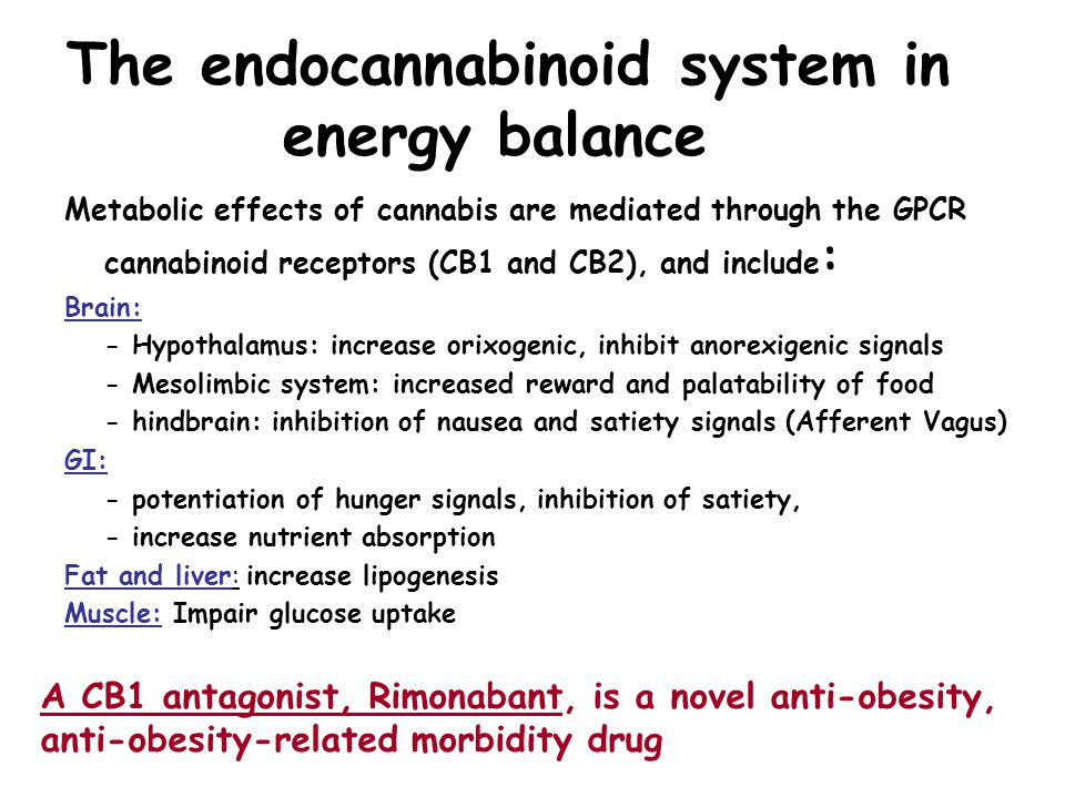 The endocannabinoid system in energy balance