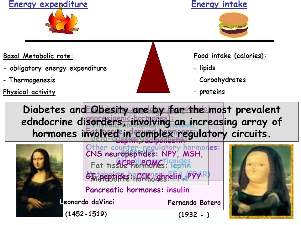 Energy expenditure Energy intake. Basal Metabolic rate: - obligatory energy expenditure. Thermogenesis.