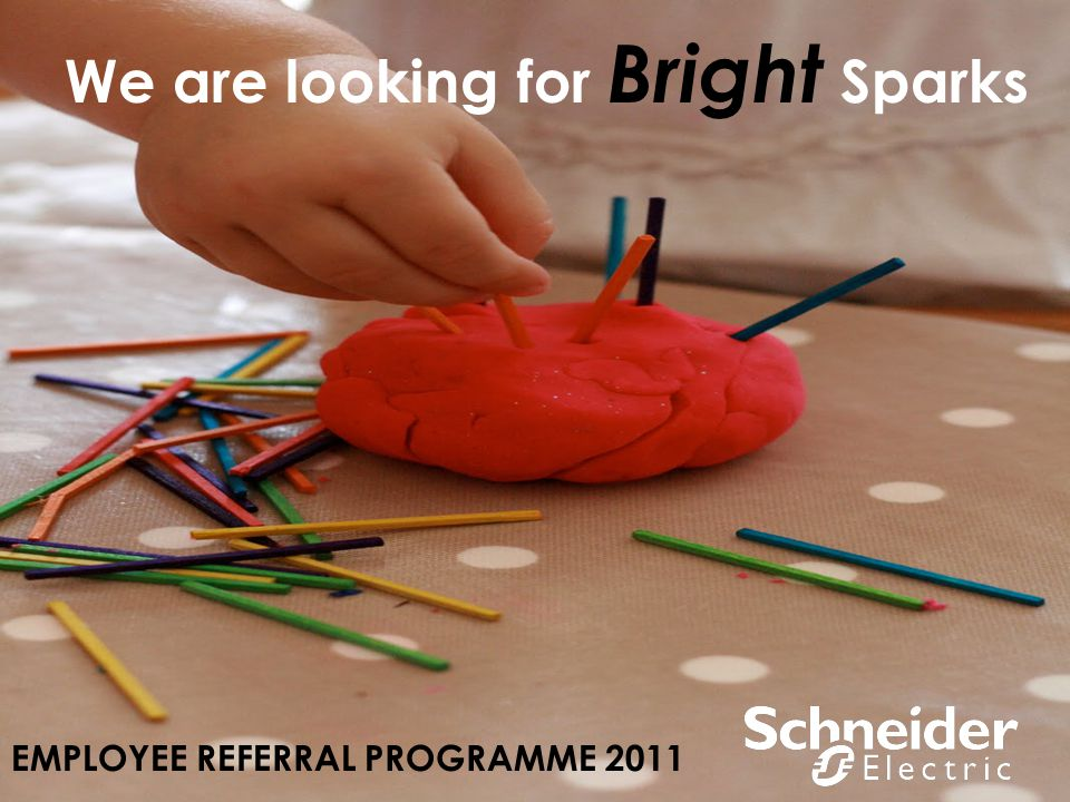 We are looking for Bright Sparks