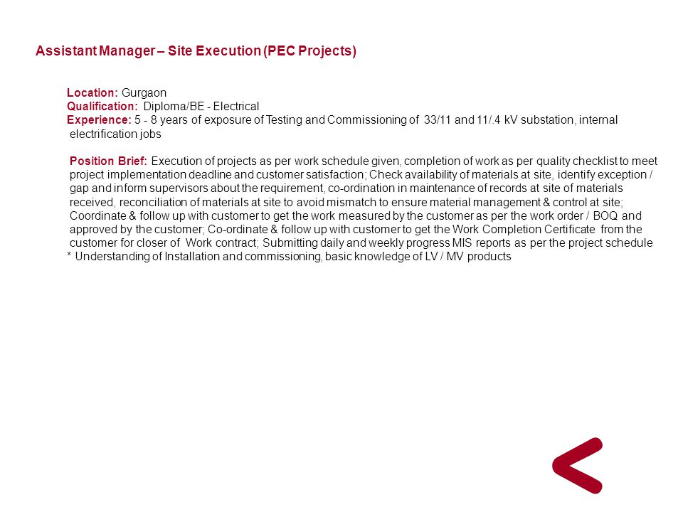 Assistant Manager – Site Execution (PEC Projects)