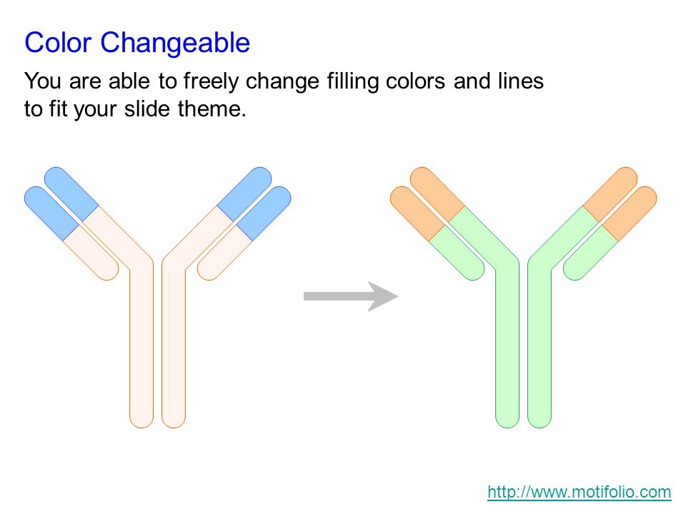 Color Changeable You are able to freely change filling colors and lines to fit your slide theme.