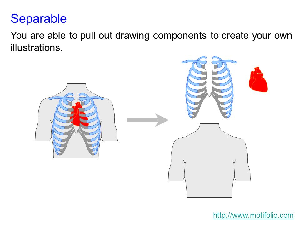 Separable You are able to pull out drawing components to create your own illustrations.