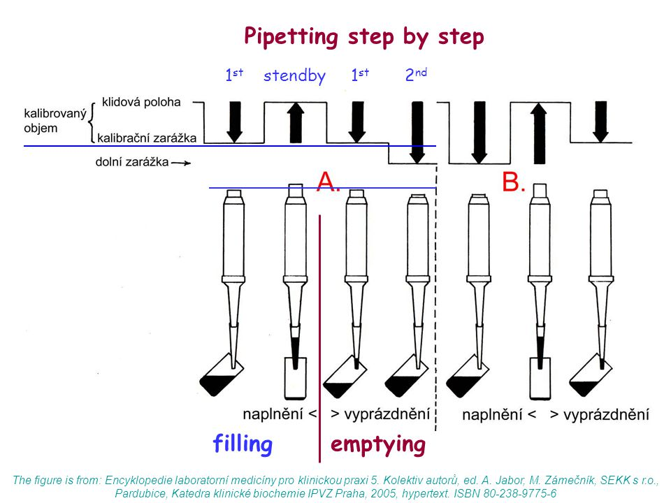 Pipetting step by step filling emptying 1st stendby 1st 2nd