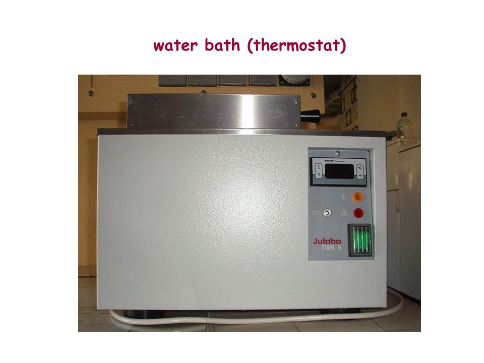 water bath (thermostat)