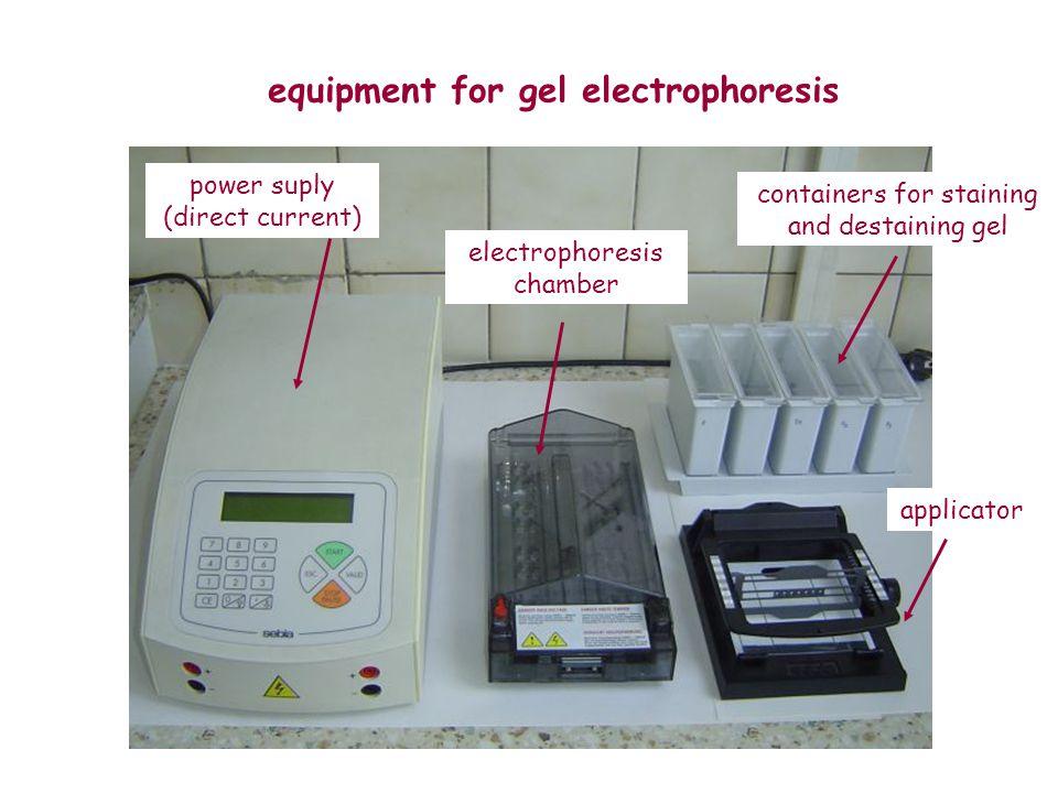 equipment for gel electrophoresis