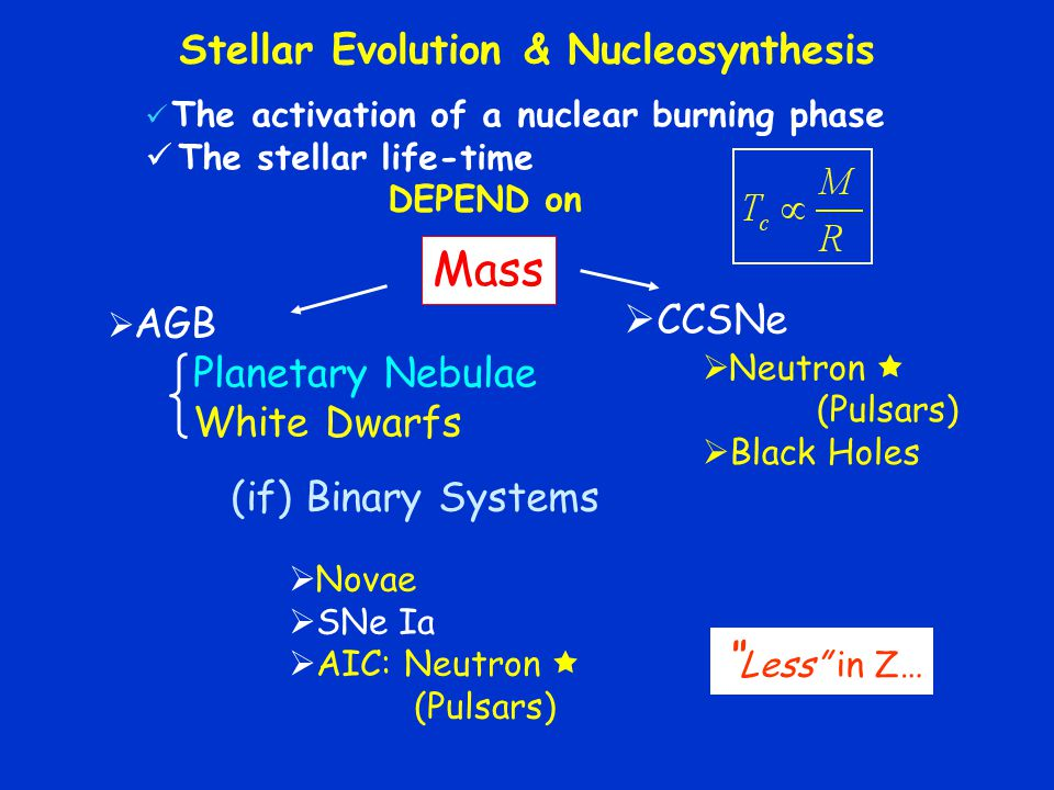 Stellar Evolution & Nucleosynthesis