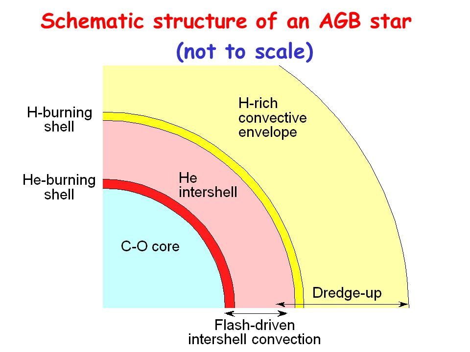 Schematic structure of an AGB star