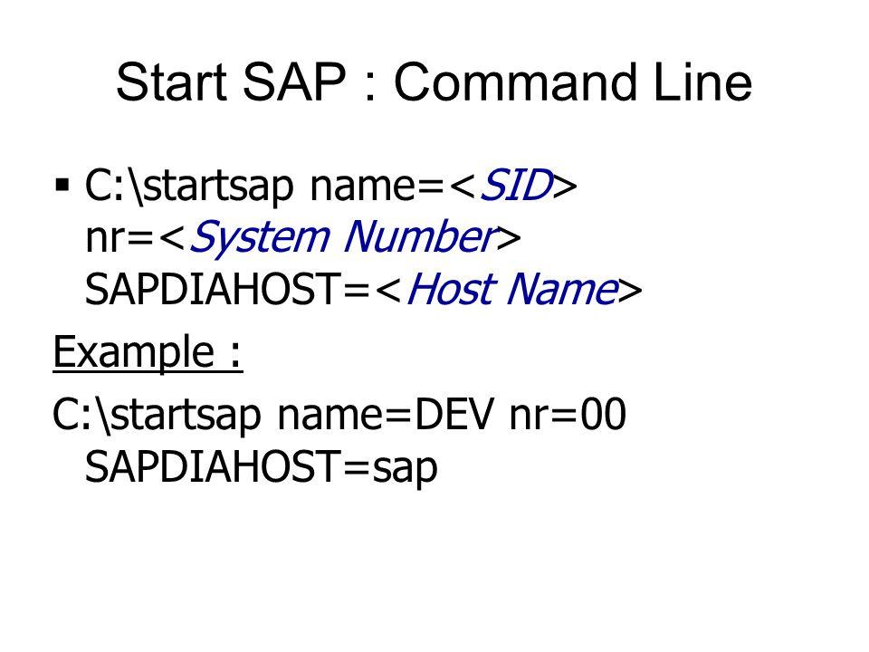 Start SAP : Command Line